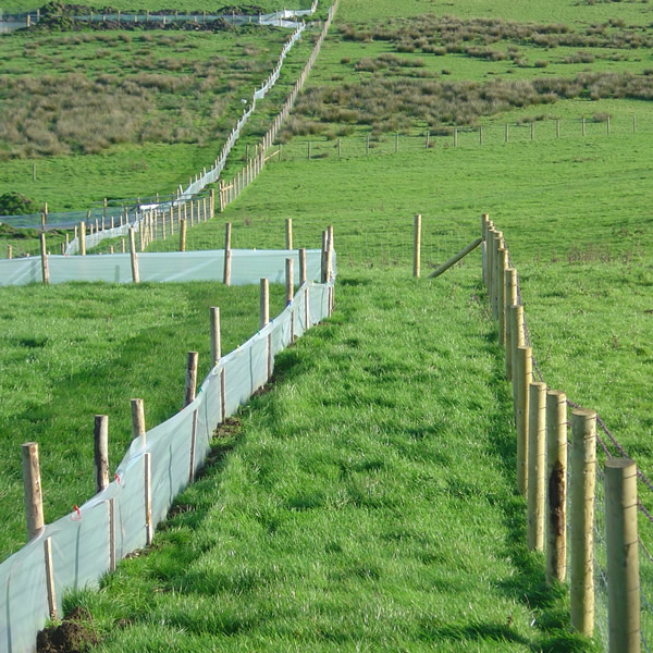 The Fence Line Newt Barrier Film Amphibian Protective