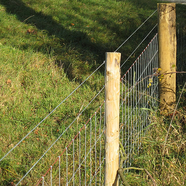 High Tensile Plain Wire Rolls Of Wire Plain Wire Fencing