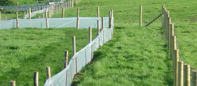 The Fence Line Newt Barrier Film